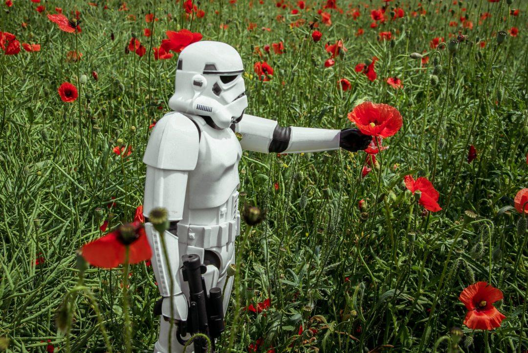 Storm Trooper in Poppy Field for Wedding