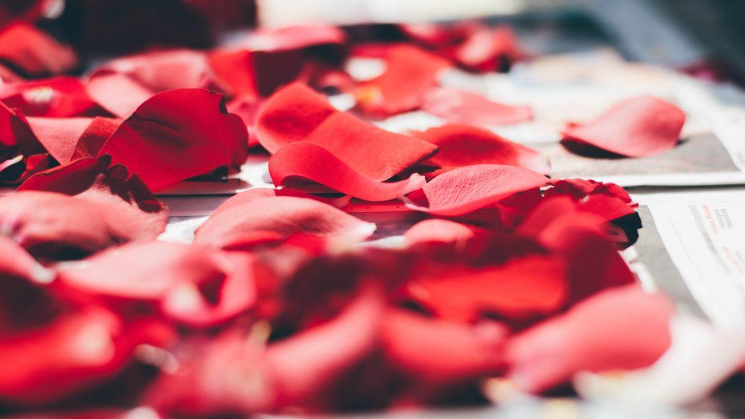 Red Rose Petals as natural wedding confetti idea